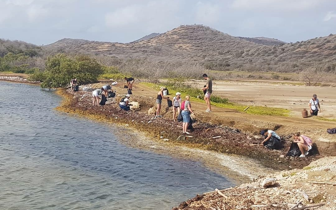 Shoreline cleanup at Curacao